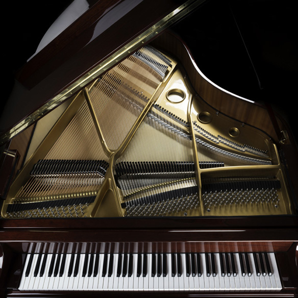 grand piano overview, keyboard, strings, and inside